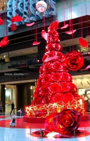 ◆街はクリスマス★_e0154682_23075824.jpg