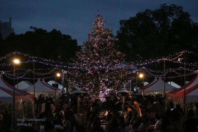 Nagoya Christmas Market_b0324291_01510703.jpg