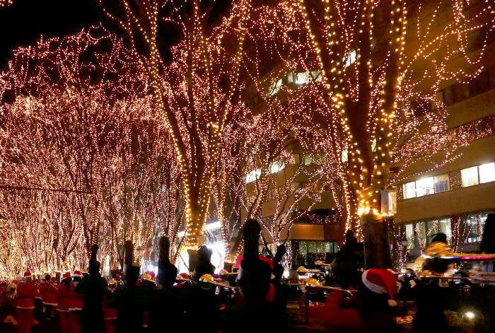 仙台市定禅寺通り 「光のページェント」(3) _d0106628_17002939.jpg