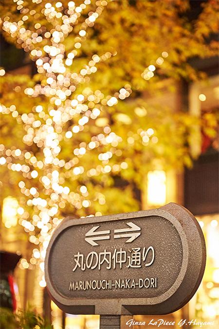 東京の風景 丸の内の雰囲気_b0133053_00511918.jpg