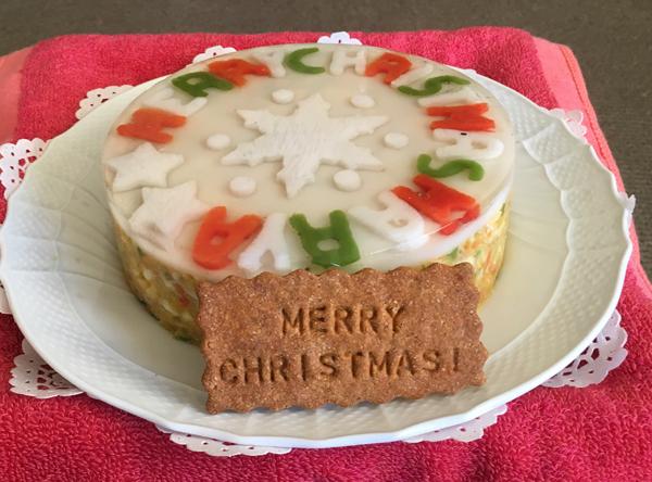 メーリークリスマス♪〜_c0110361_10131221.jpg