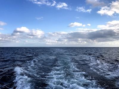 「クジラ探しへ!」_b0033573_17224663.jpg