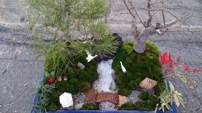 温室通信 正月用盆栽を制作しました!_d0338682_13552595.jpg