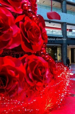 ◆街はクリスマス★_e0154682_00260617.jpg