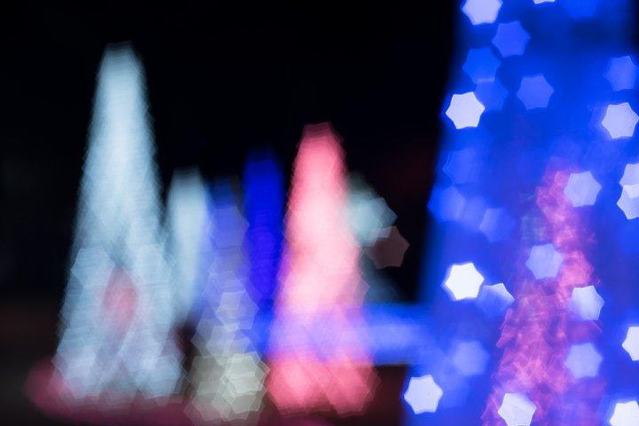 星がまたたく都市公園_d0353489_205211.jpg
