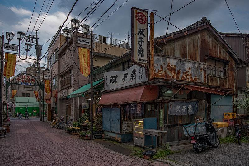記憶の残像 2017年 花の東京 -64 東京都足立区 北千住_f0215695_21160675.jpg
