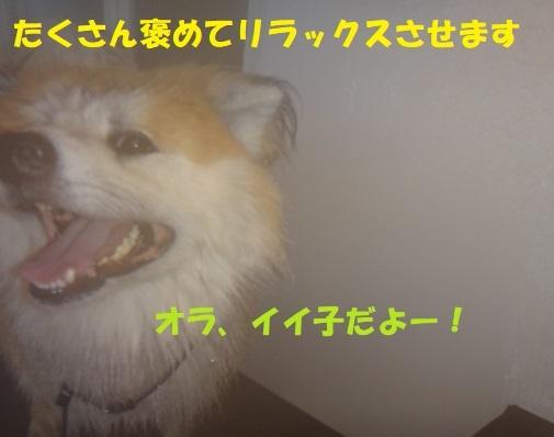 f0121712_09283094.jpg