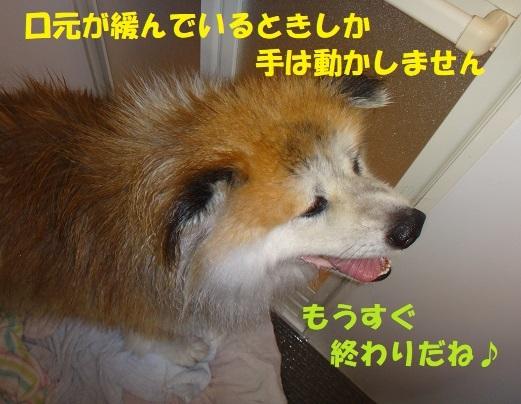 f0121712_09295741.jpg