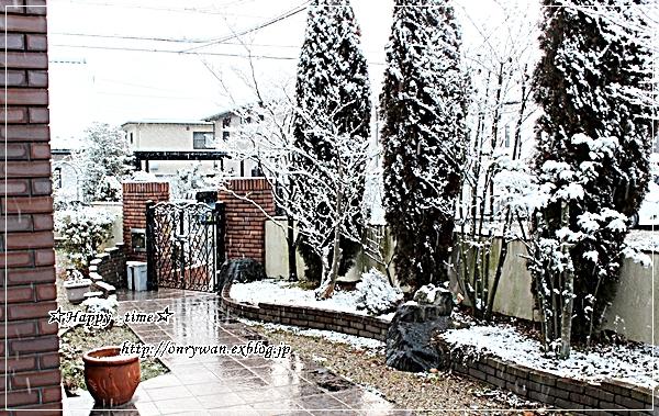 オムライス弁当とちらっと雪~♪_f0348032_18125850.jpg