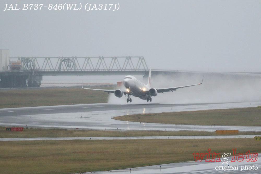 '17年 関西空港(RJBB)レポート ・・・ JAL/JA317J_f0352866_22491081.jpg
