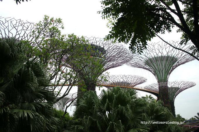 シンガポールの午後_b0324291_22344292.jpg