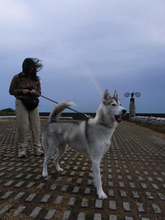First Pilgrimage for Siberian Husky Hana II  Dec.22nd, 23rd, 24th, 25th, 26th, and 27th 2006_c0049299_19552052.jpg