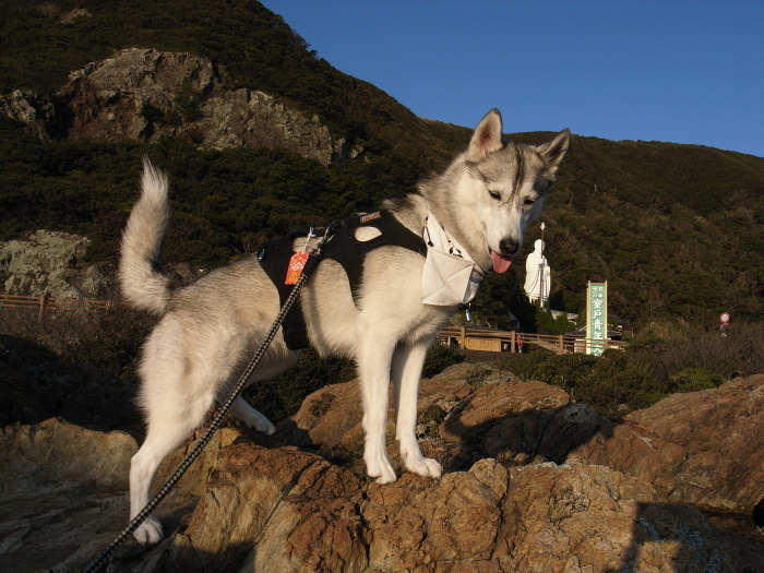 First Pilgrimage for Siberian Husky Hana II  Dec.22nd, 23rd, 24th, 25th, 26th, and 27th 2006_c0049299_21130749.jpg