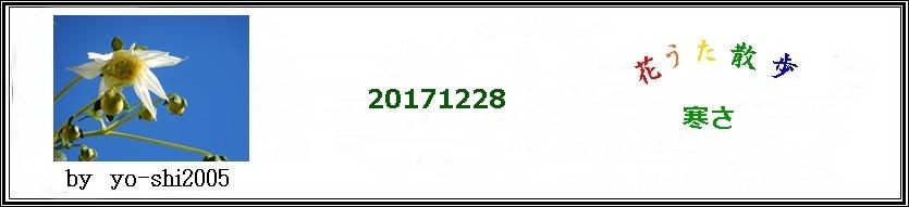 e0033229_18531625.jpg