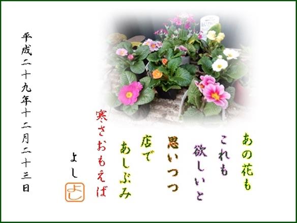e0033229_21192281.jpg