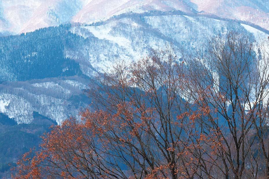 雪のある風景_c0067040_21500329.jpg