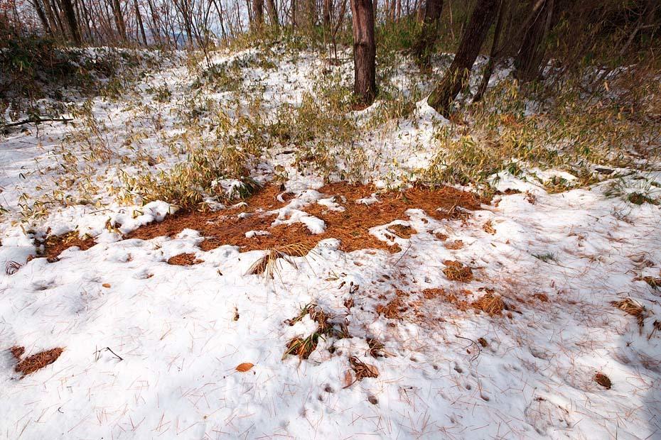 雪のある風景_c0067040_21520982.jpg