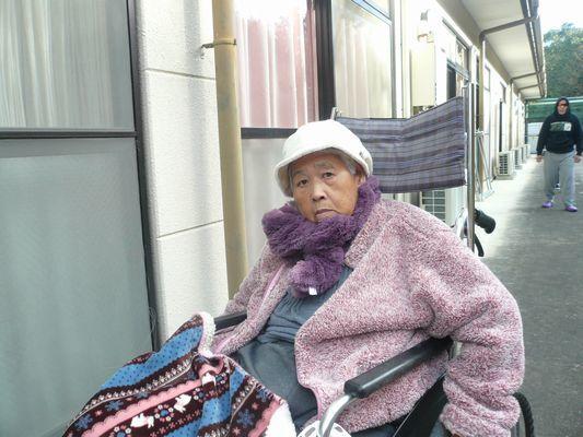 12/28 散歩_a0154110_09161485.jpg