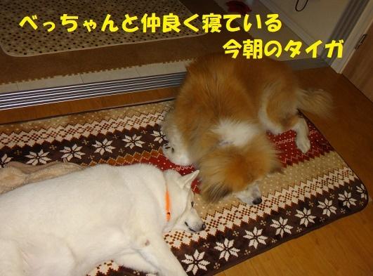 f0121712_08364680.jpg
