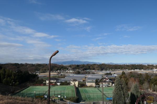 東俣野中央公園(横浜市戸塚区)_f0369014_13405553.jpg
