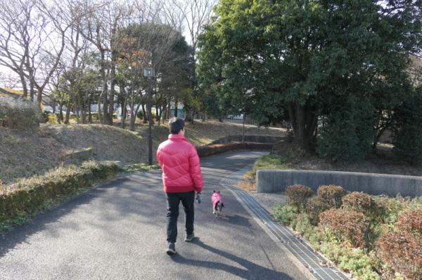 東俣野中央公園(横浜市戸塚区)_f0369014_13461808.jpg
