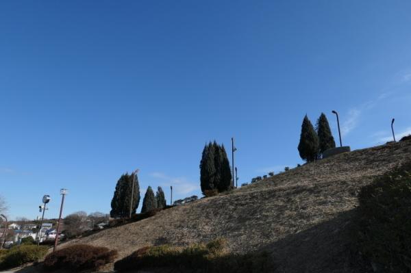 東俣野中央公園(横浜市戸塚区)_f0369014_17524792.jpg