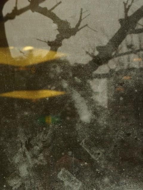 f0288049_20090845.jpg