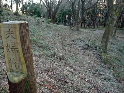 六国見山の森は27日、畑は28日に2017年の仕事納め_c0014967_1041251.jpg