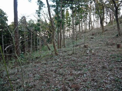 六国見山の森は27日、畑は28日に2017年の仕事納め_c0014967_1051366.jpg