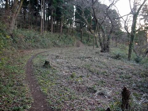 六国見山の森は27日、畑は28日に2017年の仕事納め_c0014967_1052958.jpg
