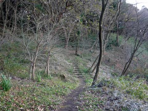 六国見山の森は27日、畑は28日に2017年の仕事納め_c0014967_105492.jpg