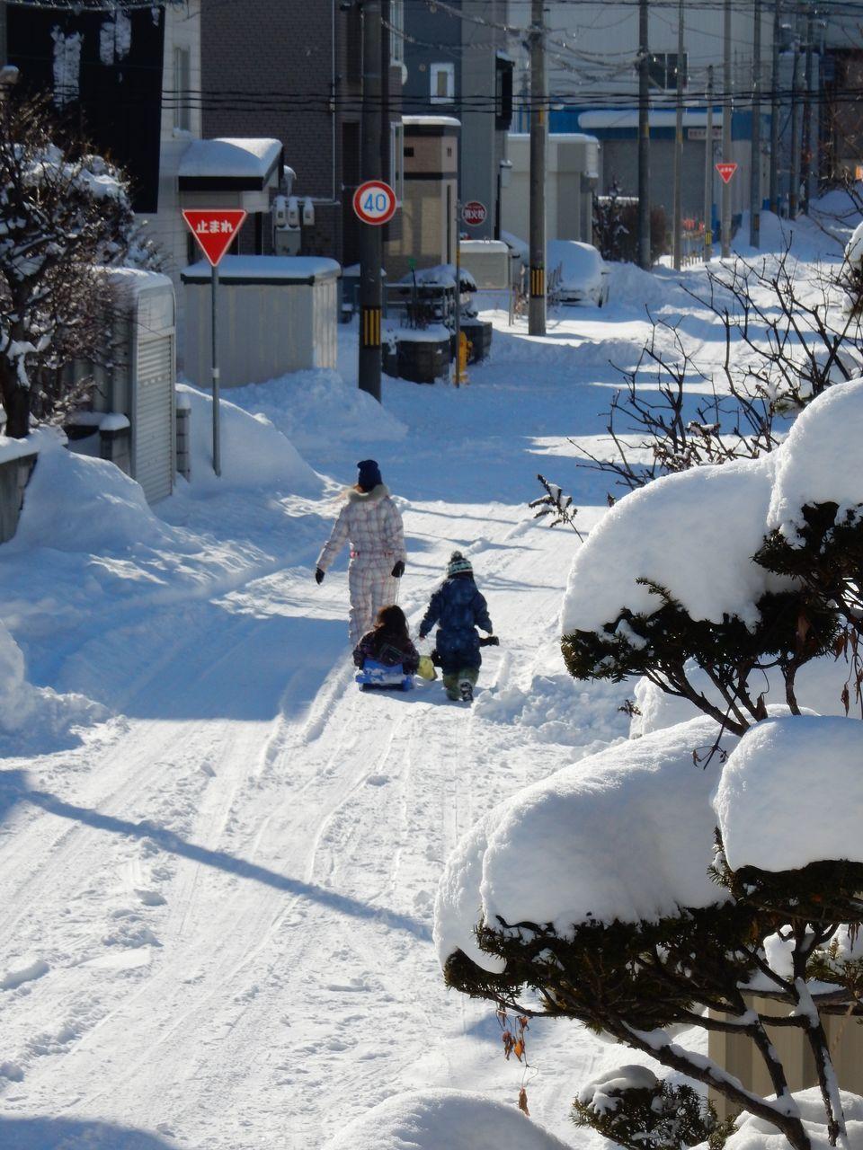 ようやく真冬日抜け_c0025115_21084688.jpg