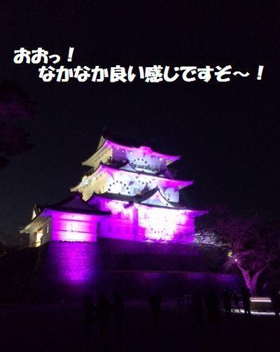 小田原城がライトアップしているよ_e0234016_17592759.jpg