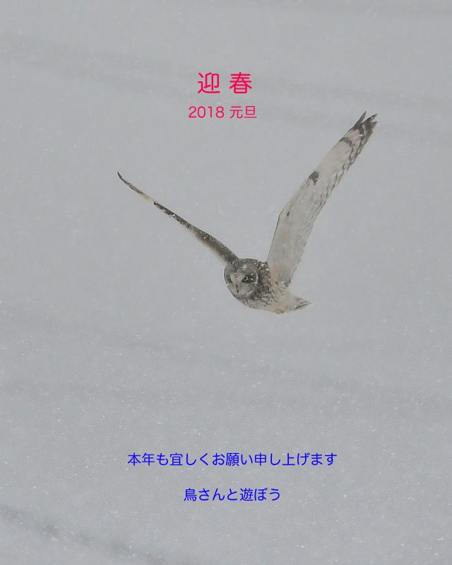 f0053272_23115808.jpg