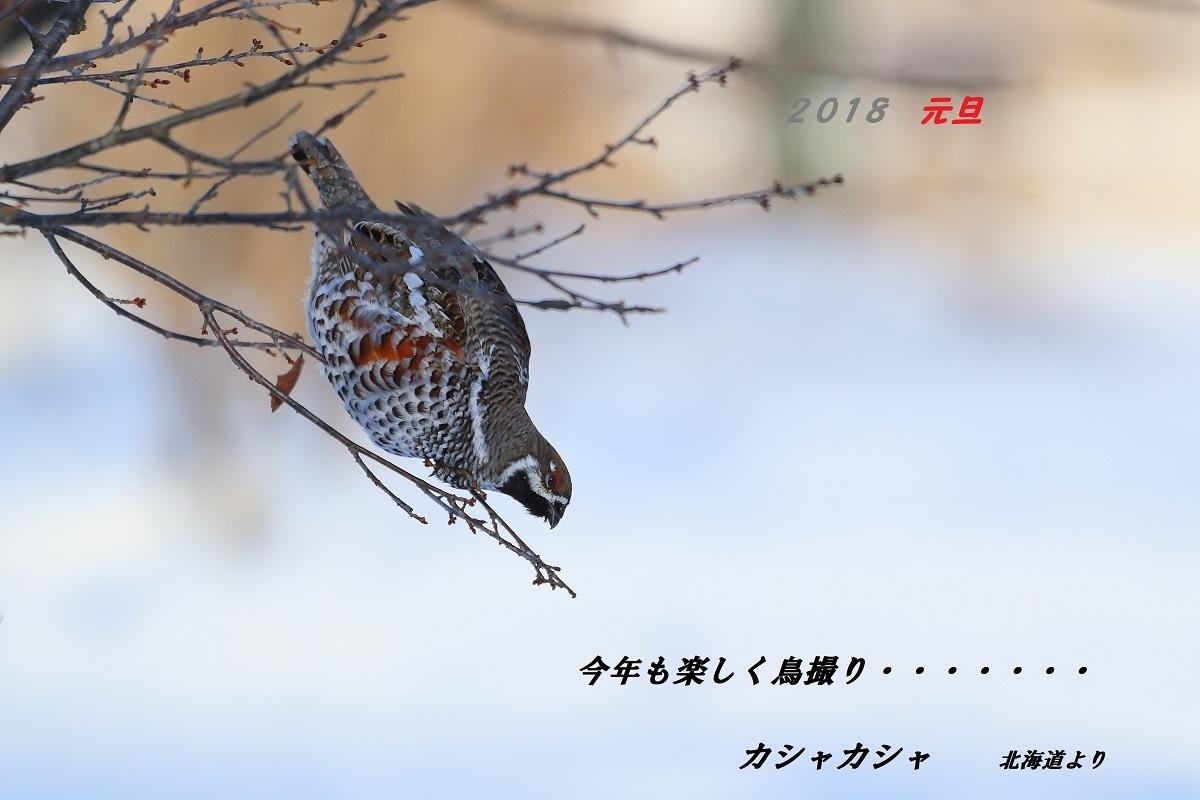 c0295707_17183559.jpg