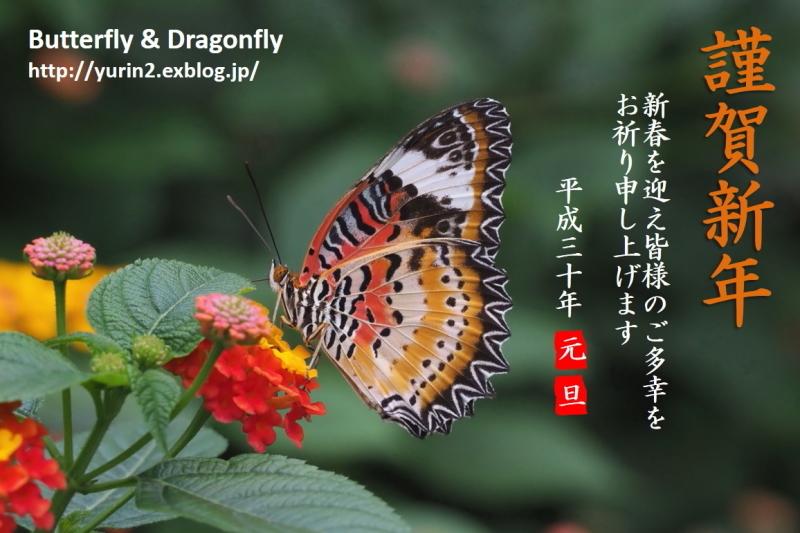 f0345350_22283114.jpg