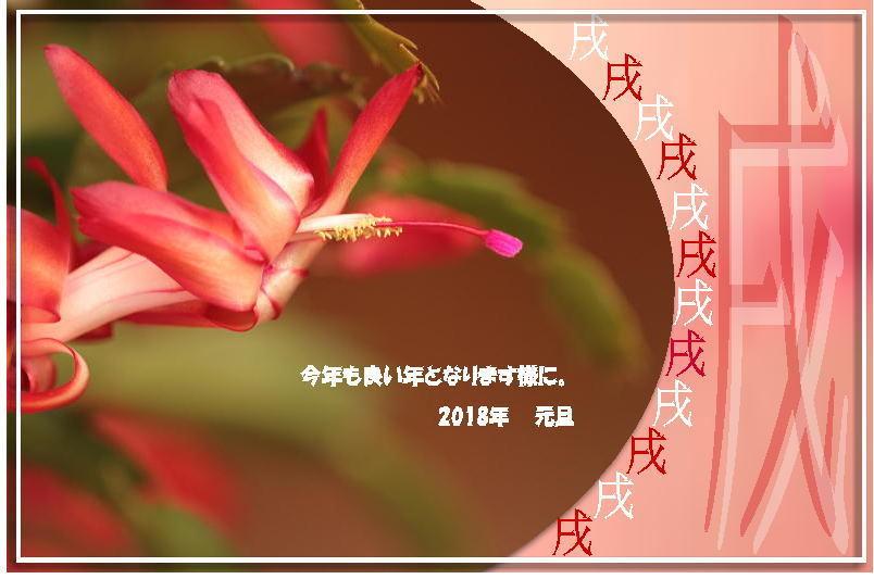 f0164592_18590418.jpg