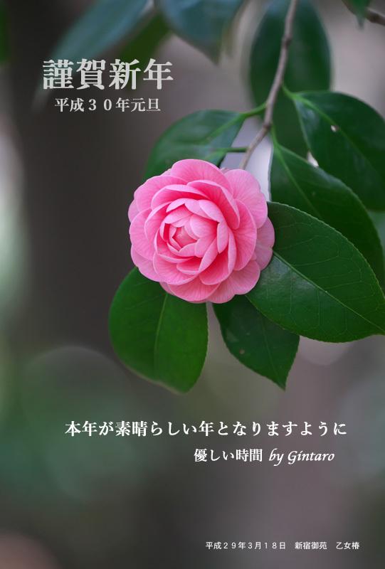 f0233999_23573834.jpg