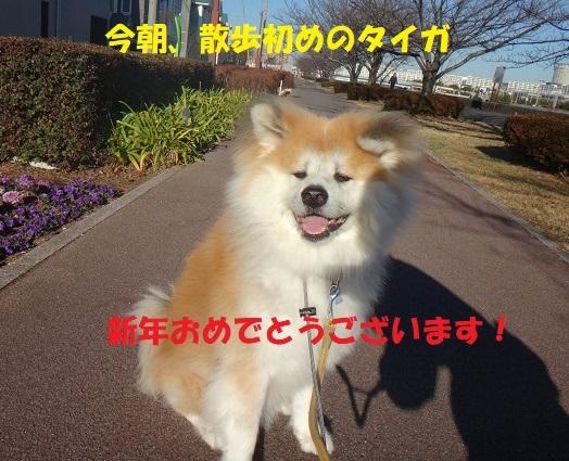 f0121712_23474313.jpg