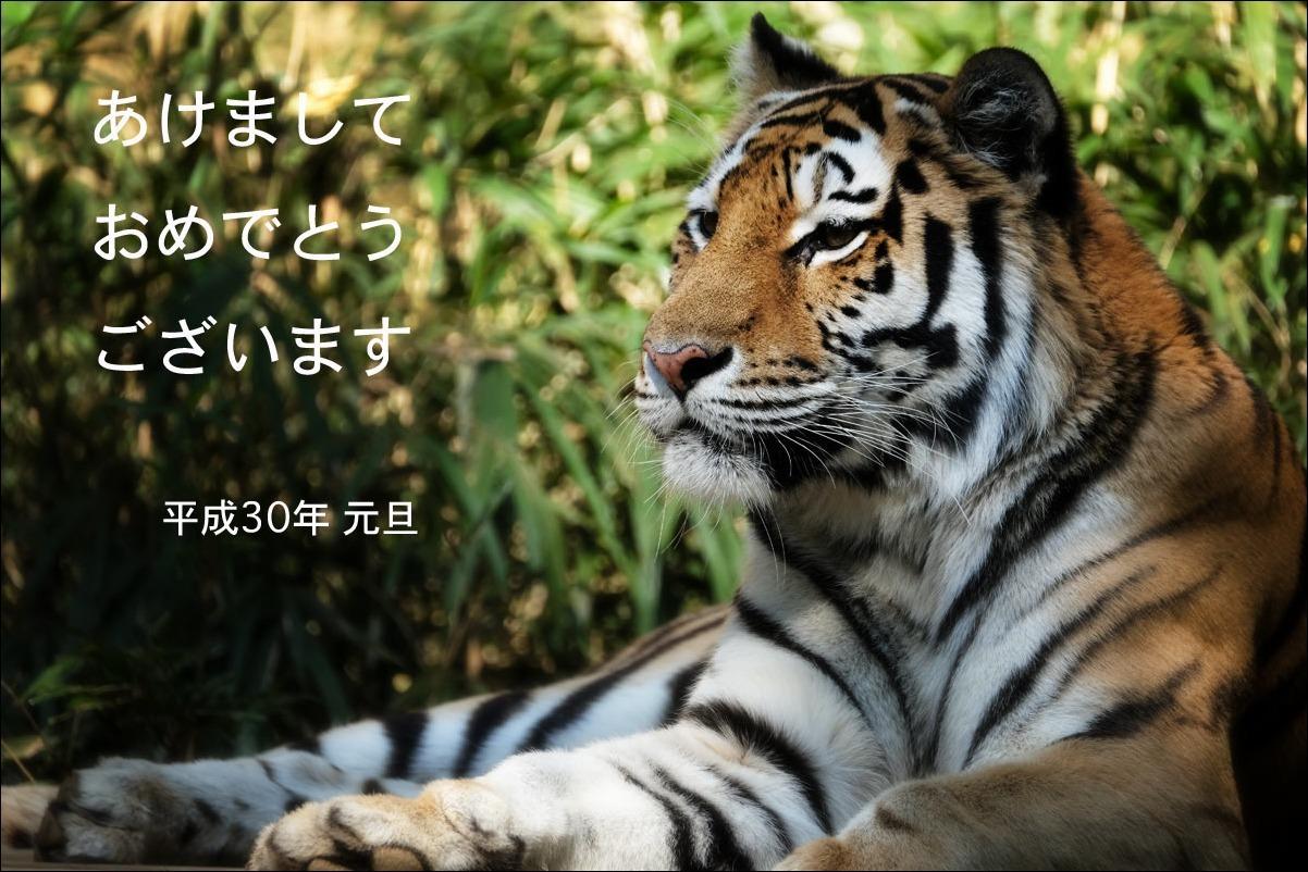 b0057213_01402098.jpg