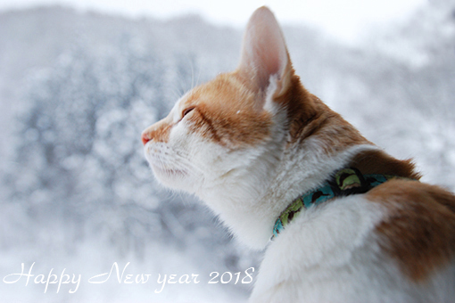 2018新年!_b0259218_05215563.jpg
