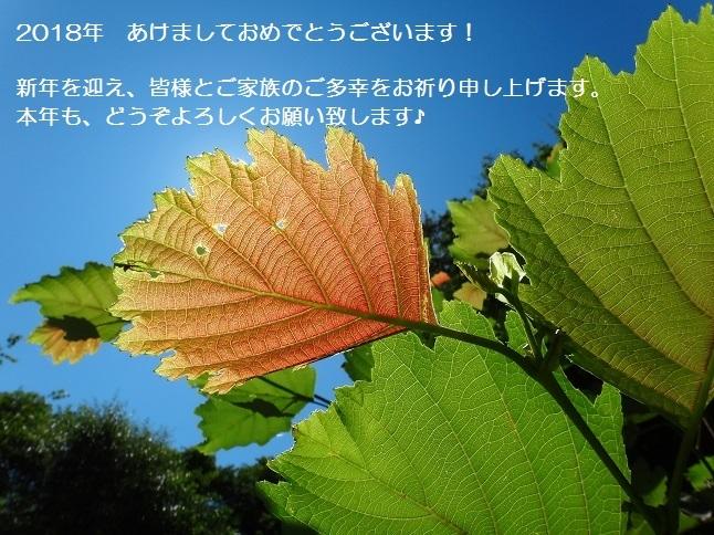 e0119840_00004193.jpg