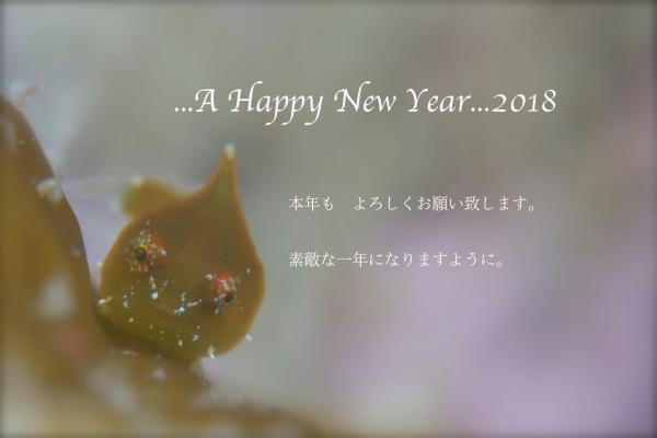 c0181248_20124418.jpg