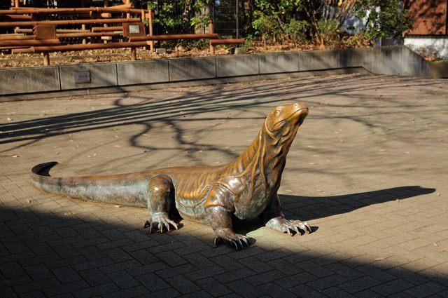 両生爬虫類館の常設展示_c0081462_08563557.jpg