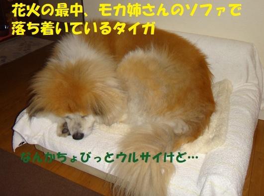 f0121712_00062698.jpg
