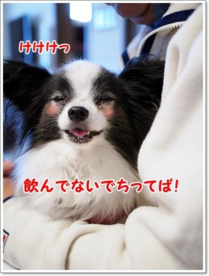d0013149_00004046.jpg