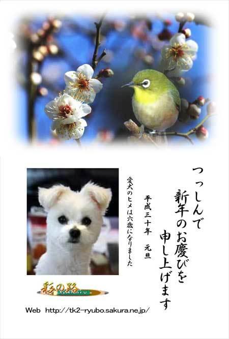 c0080352_13010834.jpg