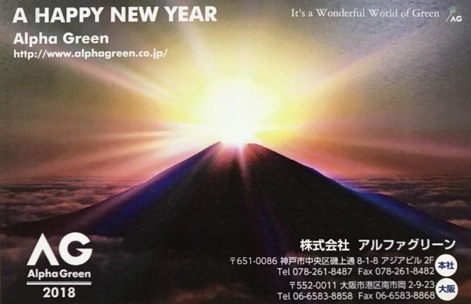 Happy New Year_f0200477_10353394.jpg