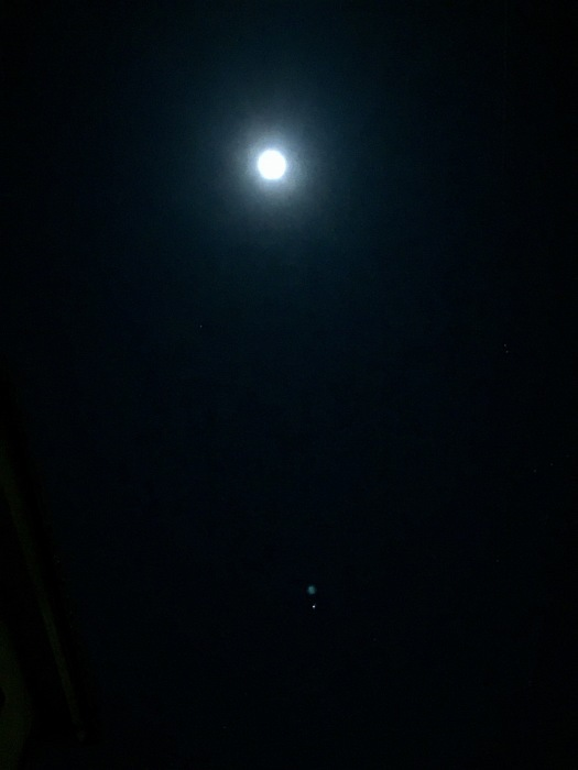 お月様の灯り_d0105967_20052739.jpg