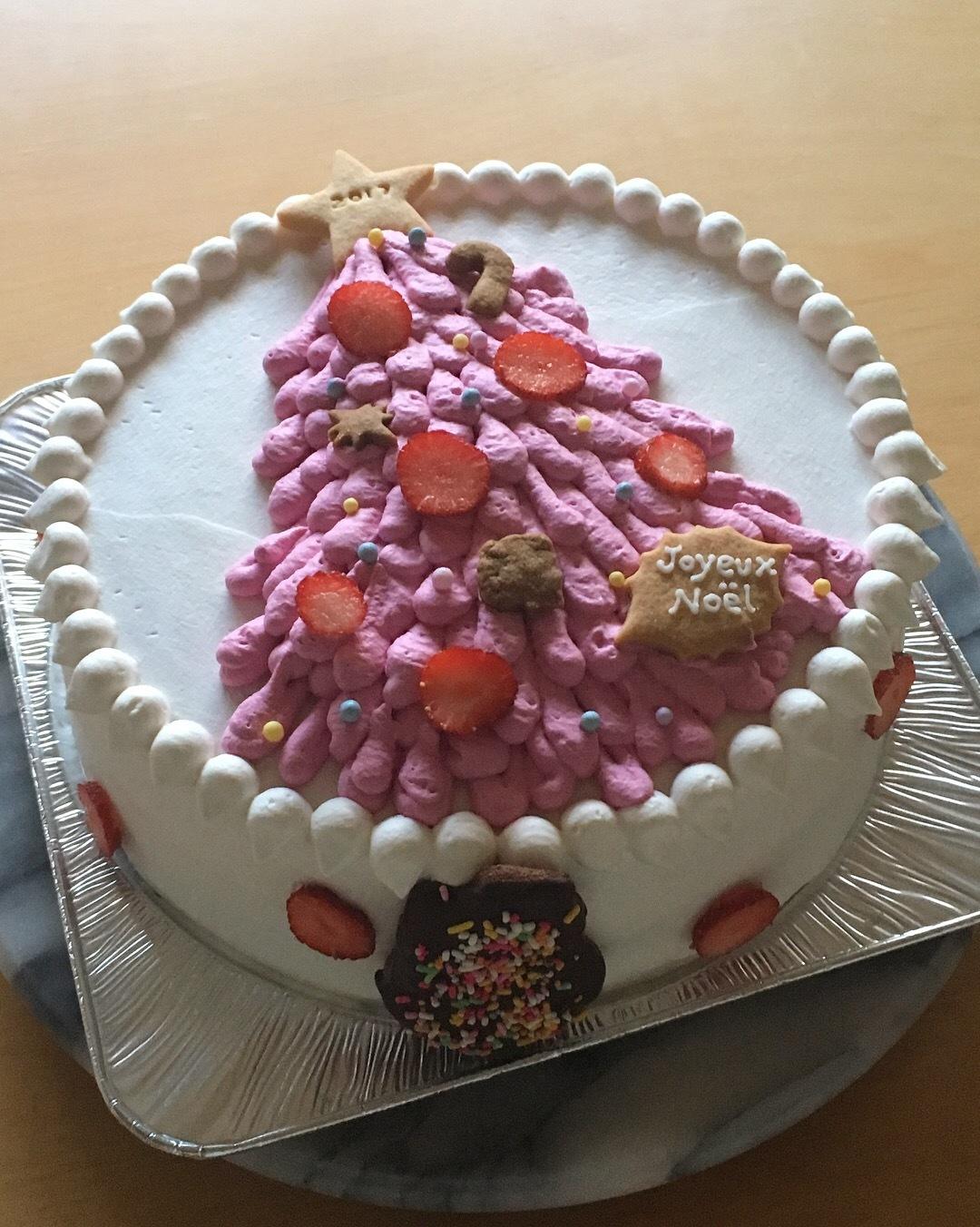 2017 クリスマスケーキ_f0183981_15571824.jpg